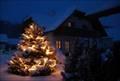 Trotz Weihnachtsbeleuchtung Stromkosten sparen © kai-creativ - Fotolia.com