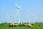 Mitmachen und Klima schützen! © Otmar Smit - Fotolia.com