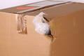 Pflichten des Händlers bei Transportverlusten oder -schäden © Klaus Eppele - Fotolia.com