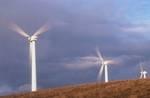 Windenergie in Baden-Württemberg © Hoffman/Greenpeace