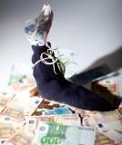 Genussrechte: Mehr Risiko, aber höherer Zins als Festgeld